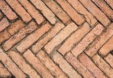 Brown-Farbe des Ziegelstein-Gehwegs im Garten Lizenzfreie Stockbilder