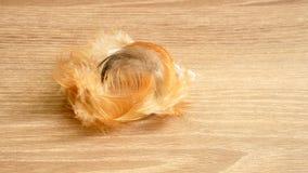 Brown-Farbe flaumig und zerbrechlich vom Hühnerfederfall auf Holztisch lizenzfreie stockfotos