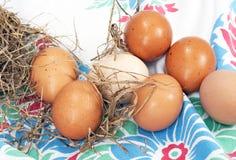 Brown Farm Fresh Eggs Stock Photo