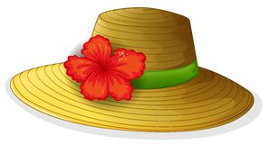 A brown fashion hat with a flower Royalty Free Stock Image