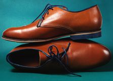 Brown fashion leather male shoes Stock Photos