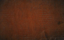 Brown Faux Crocodile Leather. A roughened and distressed piece of brown faux crocodile leather book-cover, for use as a background texture Royalty Free Stock Photos