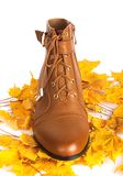Brown female boots on a background of autumn leaves Stock Images