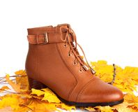 Brown female boots on a background of autumn leaves Royalty Free Stock Photos