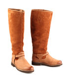 Brown female boots Stock Image