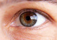 Brown female eye close-up. Brown beauty female eye close-up without makeup Royalty Free Stock Photo