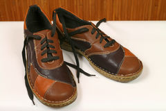 Brown female shoes. New brown female shoes made of leather Stock Photos