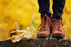 Brown female shoes on a stump, wanting foliage. Autumn concept Royalty Free Stock Photo