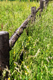 Brown fence in a green hayfield Royalty Free Stock Images