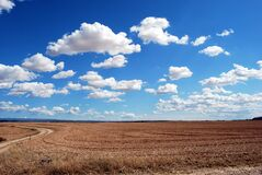 Brown Field and Blue Sky Royalty Free Stock Photos