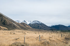 Brown field with Mountain backdrop in cloudy day, New Zealand Stock Photography