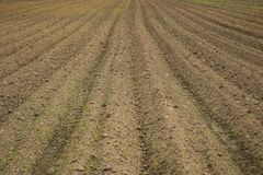 A brown field with ploughed rows of dirt Royalty Free Stock Photography