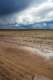 Brown field. Royalty Free Stock Image