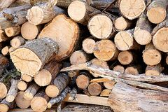 Brown Fire Wood Stock Photography