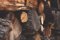 Brown Firewood Stock Photo