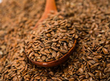 Brown flax seed Stock Photos