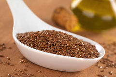 Brown Flax Seeds Royalty Free Stock Photography
