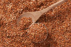 Brown flax seeds background Stock Image