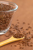 Brown Flax Seeds Stock Photography
