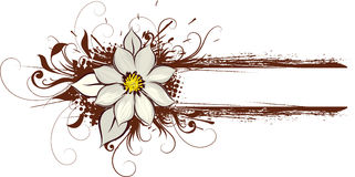 Brown Floral Art Stock Photo