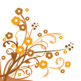 Brown floral background Royalty Free Stock Image