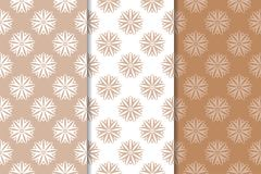 Brown floral backgrounds. Set of seamless patterns. For textile and wallpapers Royalty Free Stock Photography