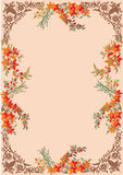Brown floral frame on pink Stock Photos