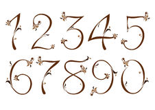 Brown floral numbers Royalty Free Stock Photo