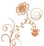 Brown flower pattern Royalty Free Stock Image