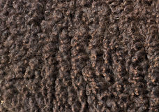 Brown Fluffy Sheep Wool Background Stock Photography