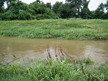 Brown-Fluss Lizenzfreies Stockfoto