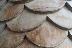 Brown forma escamas en la luz del sol, fondo de madera del squama Imagen de archivo libre de regalías