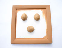Brown frame with walnut shell. Royalty Free Stock Image