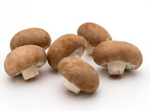 Brown fresh champignons Royalty Free Stock Images