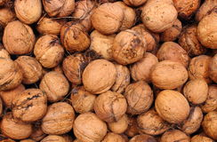 Brown and fresh walnuts as background Royalty Free Stock Photography