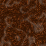 Brown fur. An illustration of long, soft, wavy and luxurious animal fur Royalty Free Stock Images