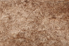 Brown Fur texture Stock Photos