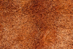 Brown fur texture Royalty Free Stock Photography
