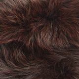 Brown fur texture Stock Photo