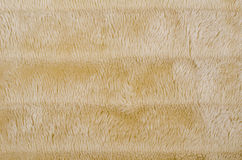 Brown furry fabric background Royalty Free Stock Photography