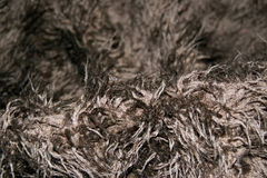 Brown furry rug Stock Images