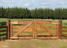 Brown Gates. Nice strong brown wooden farm gateway, with lush green grass behind it. I like the wooden slide lock on it too Royalty Free Stock Image