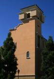 Brown-Gebäude und -kiefern Lizenzfreie Stockbilder