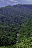 Brown-Gebirgsausblick im North Carolina Lizenzfreie Stockfotografie