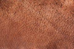 Brown giemzy tekstura obrazy stock