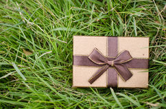 Brown gift box on green grass. Stock Photo