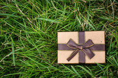 Brown gift box on green grass outdoor. Stock Images