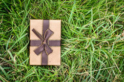 Brown gift box on green grass outdoor. Royalty Free Stock Photography