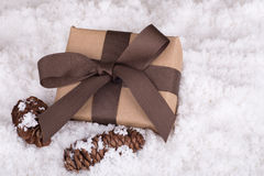 Brown Gift and Pinecones Royalty Free Stock Images