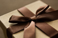Brown giftbox. With brown satin bow royalty free stock photo